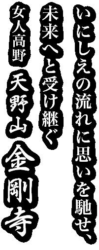 いにしえの流れに思いを馳せ、未来へと受け継ぐ 女人高野 天野山金剛寺